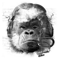 SHAKA PONK - The White Pixel Ape (Smoking Isolate To Keep In Shape) The-grey-pixel-ape-xp