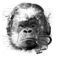 SHAKA PONK - The White Pixel Ape (Smoking Isolate To Keep In Shape) The-grey-pixel-ape-xp
